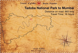 Map from Tadoba National Park to Mumbai