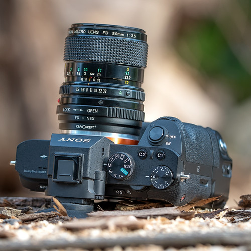 Vintage macro lens seen by modern macro lens...