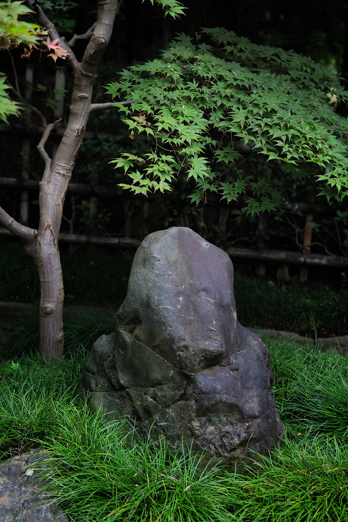 Zen Sensibility At Heirin-ji Temple