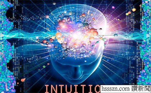 intuition01_结果