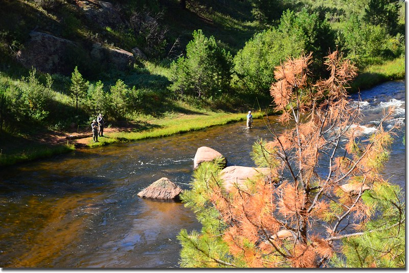 Fly fishing Cheesman Canyon on the South Platte River (1)