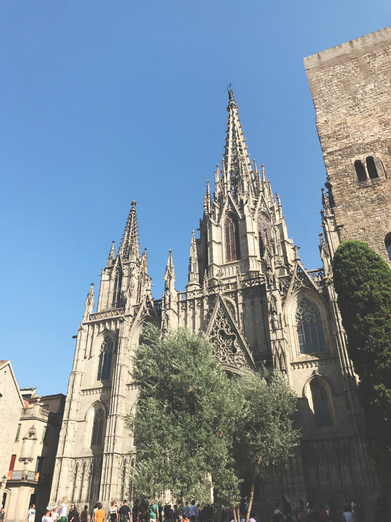 barcelona cathedral blog vivatramp uk guide to barcelona