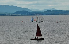 Sailing at Fortrose Bay