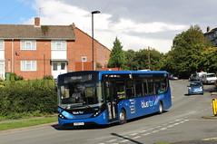 Bluestar 2750 HF65CYA