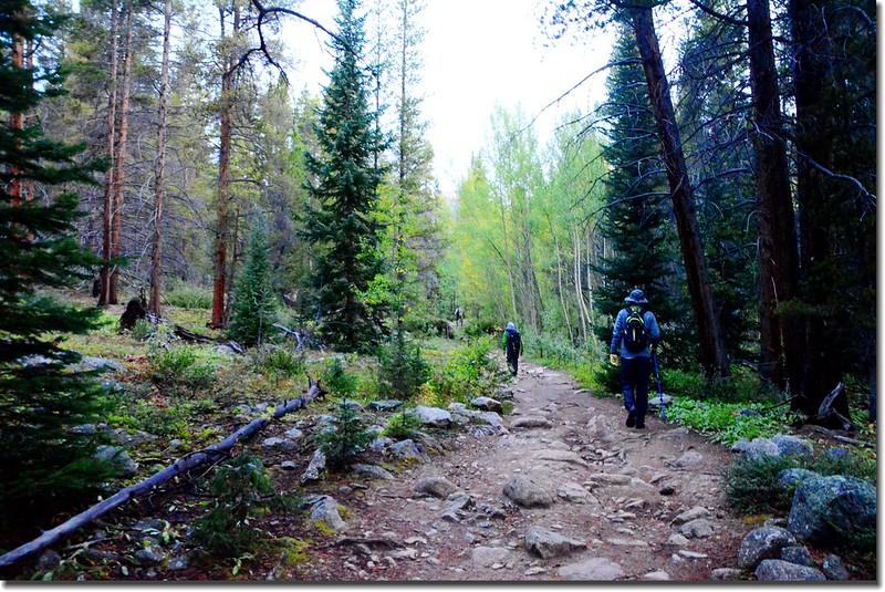 Mount Yale Trail (1)