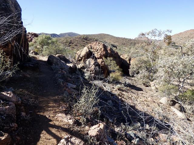 Mawson Spriggina Trail, Arkaroola, Panasonic DMC-FZ70