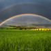 Sunshine under the Rainbow by Alexander Lauterbach Photography