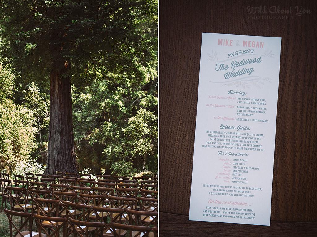 redwoodwedding042