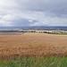Strathmore Farmland
