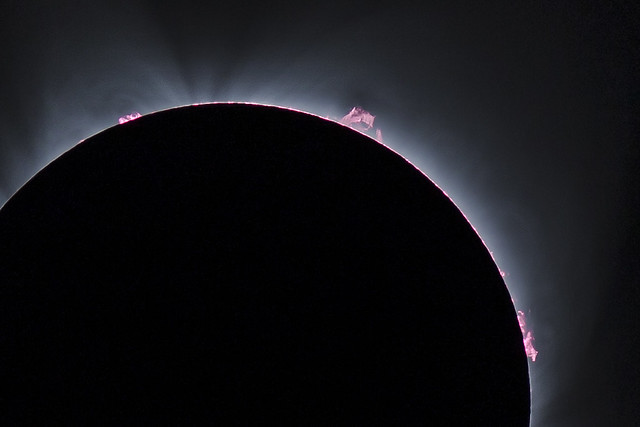 Detail of prominences / solar flares.
