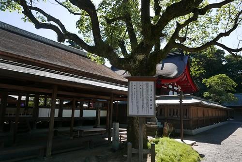 munakatataisha043