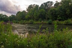 Ohio Marsh