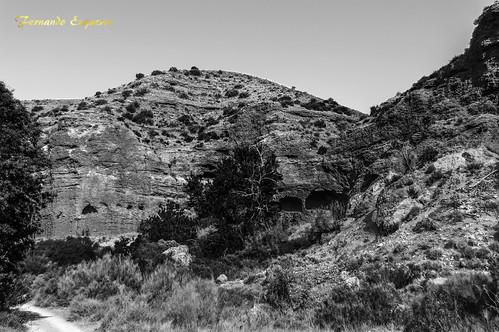 Camino de Belchite al Pozo de los Chorros