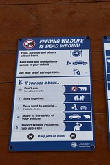 Feeding Wildlife is DEAD WRONG!