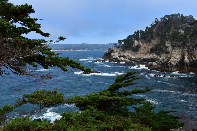 Point Lobos-002