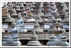 Sri Lanka. Colombo, Kataragama, Yala , Unawatuna, Galle