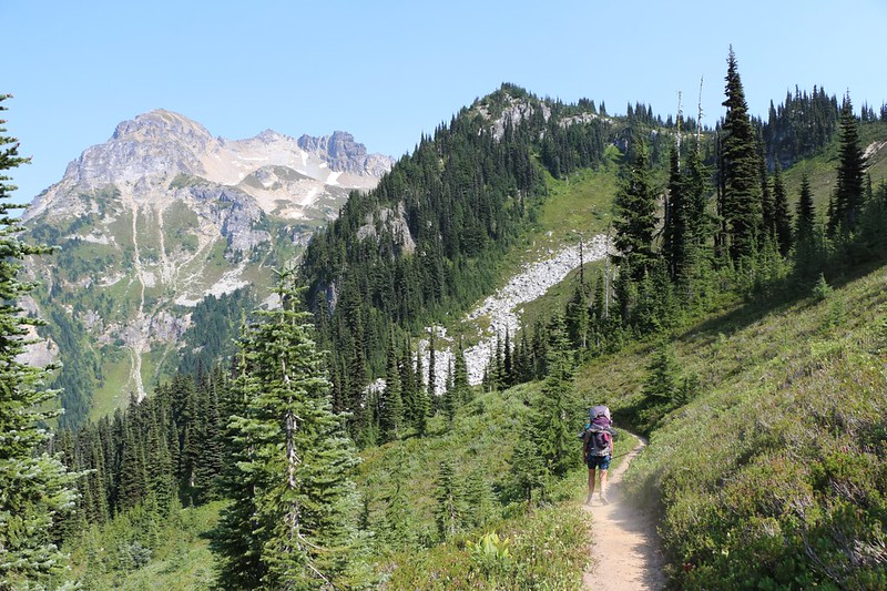 We continue on the Buck Creek Trail, heading downhill from Middle Ridge toward Miners Creek