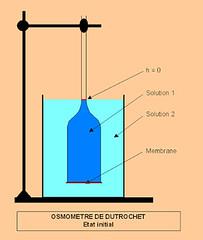 OSMOMETRIE - Alger http://ift.tt/2eVlOhY