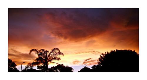 flickr foto photo image capture picture photography sony cybershot dscw3000 air pink summer nature sky cloud outdoor outdoors dusk serene dark pretty beautiful vivid color sunset twilight florida skyporn cloudporn twilightsky largoflorida
