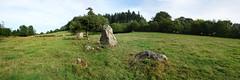 L'alignement de menhirs de la Bouaderie près de Gosné - Ille-et-Vilaine - Septembre 2017 - 01 - Photo of Liffré