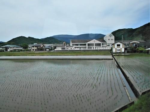 jp-uwajima-kubokawa (7)