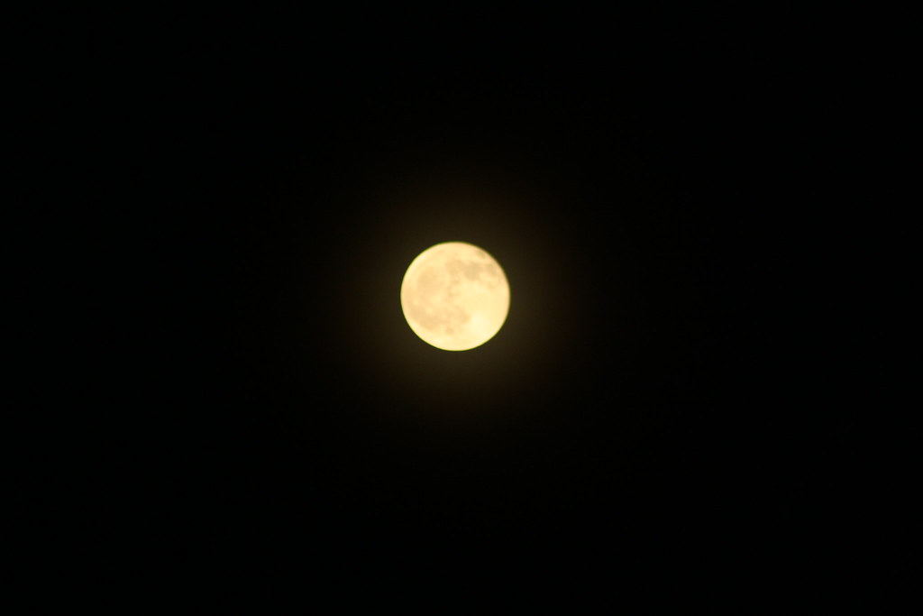 The Full Moon Glory