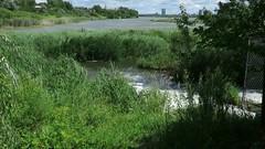 Vidéo de 3 minutes: Un parc des Rapides animé