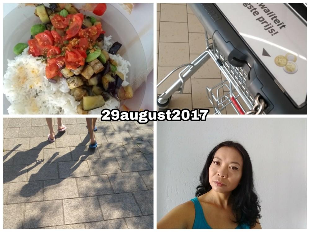 29 august 2017 Snapshot