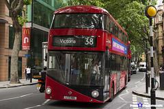 Wrightbus NRM NBFL - LTZ 1186 - LT186 - Victoria 38 - Arriva - London 2017 - Steven Gray - IMG_1119