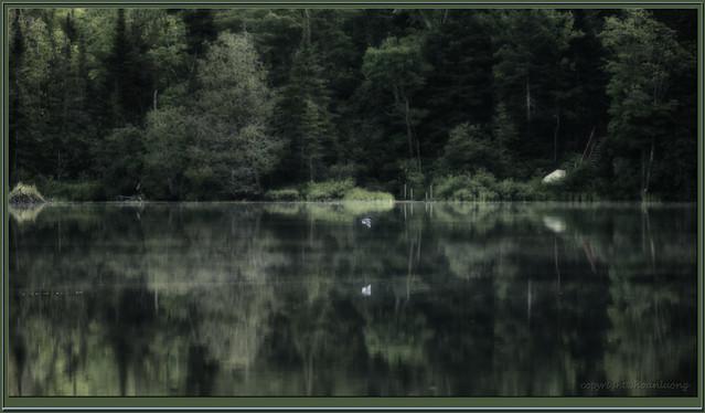 King Lake - Symmetric, Nikon D750, Sigma 150-600mm F5-6.3 DG OS HSM | S