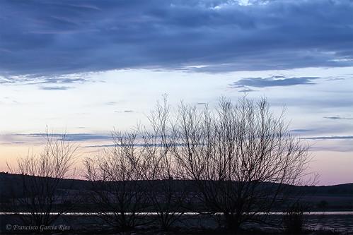 Pintando el atardecer en el cielo. / Painting the evening on the Sky.