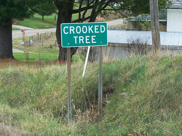 OH Crooked Tree - Sign