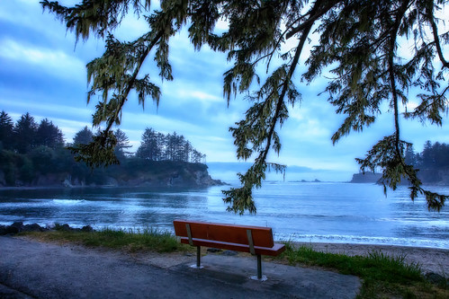 hbm bench trees bay sunsetbay oregon clouds night