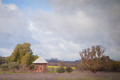 Apiary with bird, New Norcia