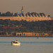 Morning Boat and Topkapı Palace by aksoykaan1