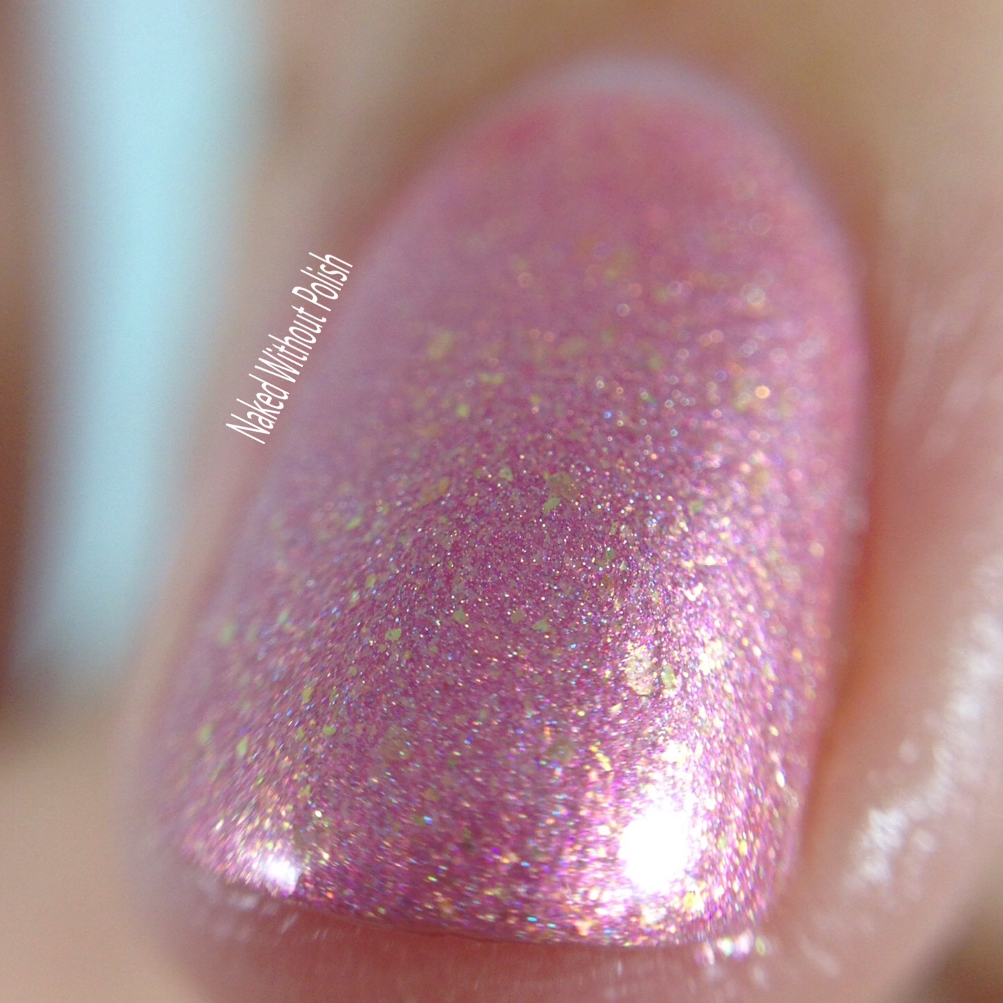 Turtle-Tootsie-Polishes-Beauty-School-Dropout-5