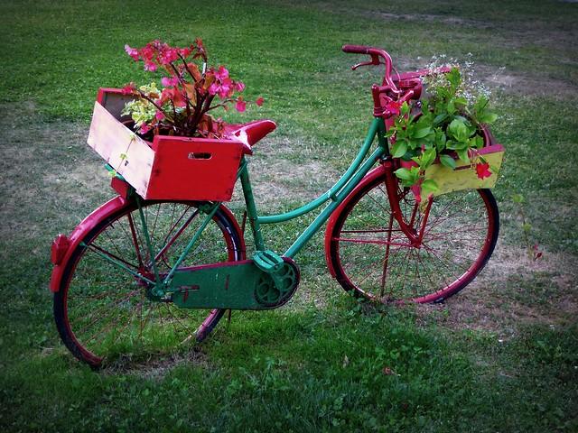 A Calizzano i fiori vanno in bici