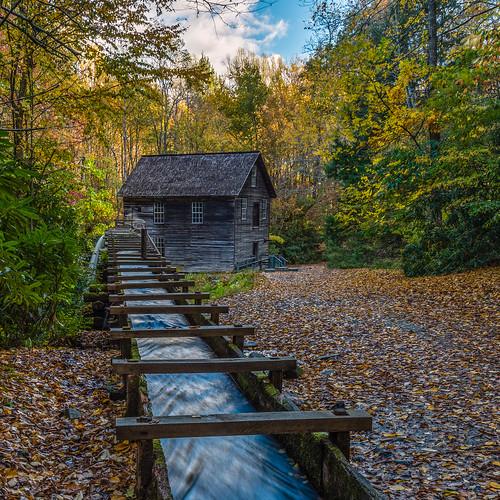 mingusmill gristmill gsmnp greatsmokymountains historic appalachia agricultural millrace millrun autumn fall leaves foliage trees nc northcarolina