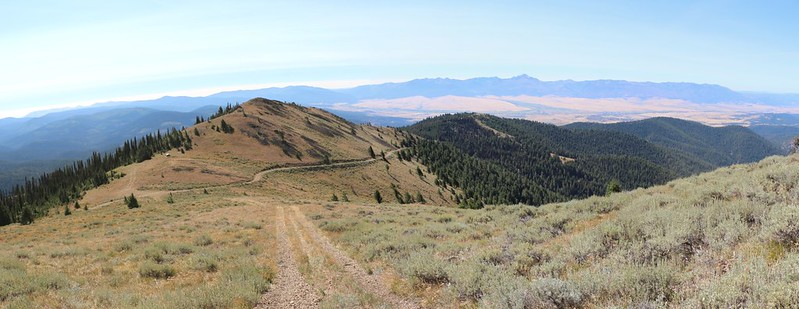 Looking back south down NF2610 from the summit of Dixie Butte