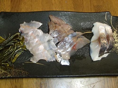 日本神奈川県真鶴港 八十吉丸、 午前線五目釣行 - naniyuutorimannen - 您说什么!