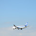 ANA B787 JA825A Going to Land at Haneda Airport 8