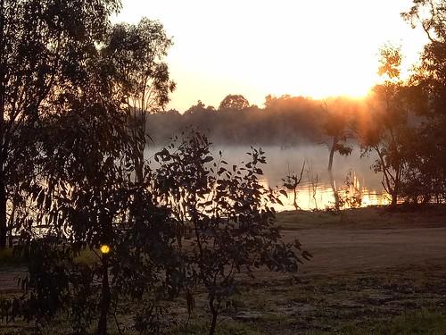 Ride to Bowna. Sunrise & mist