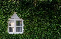 Fenêtre secret
