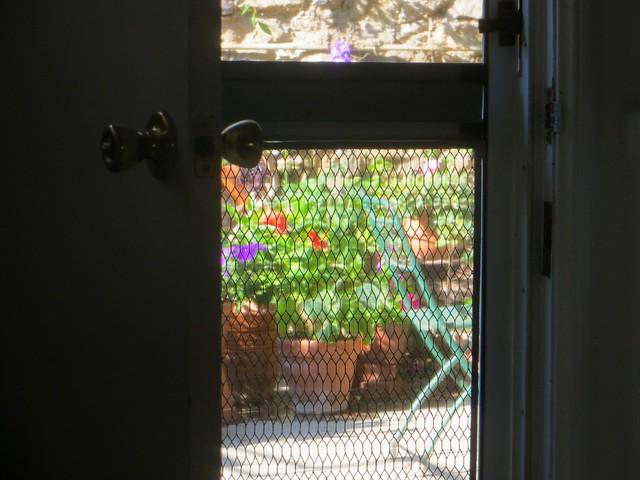 the garden calls