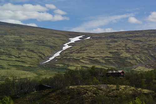 nordkap ferie holiday bus norge sverige finland norway sweden dovrefjell fjeld natur nature