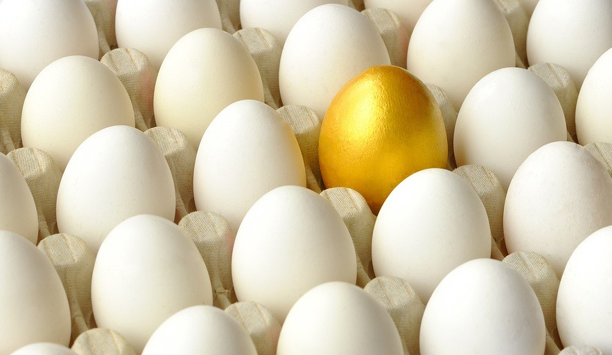 Don't Be a White Egg