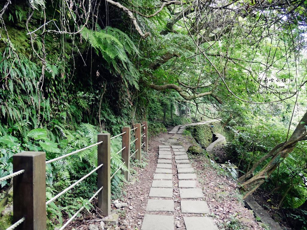 陽明山一日遊景點推薦絹絲瀑布步道 (8)