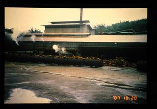Palm Oil Mill = パームオイル搾油工場