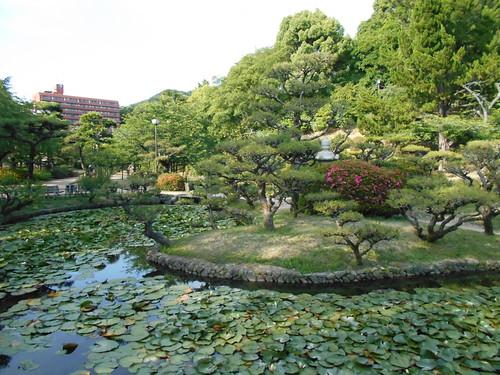 jp-matsuyama-Parc Dogo (2)