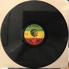 BUNNY WAILER:DUBD'SCO VOL.1(RECORD SIDE-A)